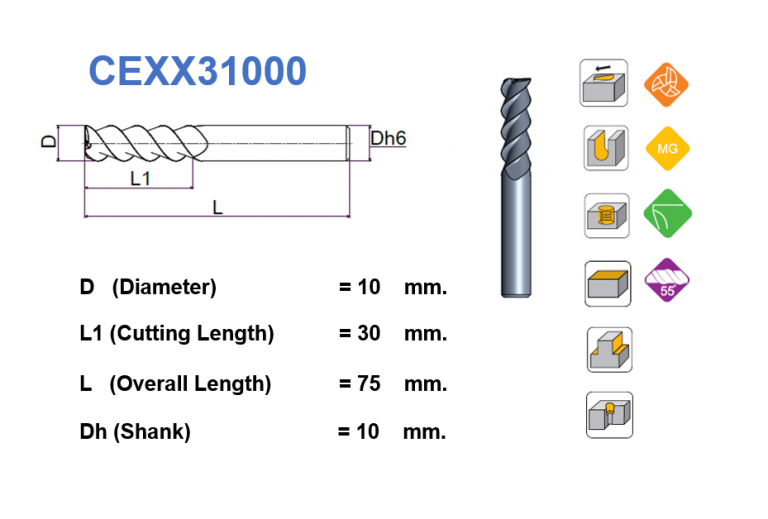 CEXX31000