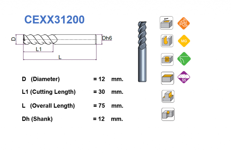 CEXX31200